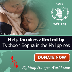 Help families affected by Typhoon Bopha in the Philippines